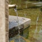 Water source closeup...