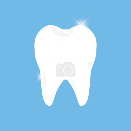 Teeth vector illustration