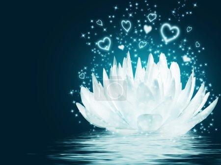 Magical lotus flower