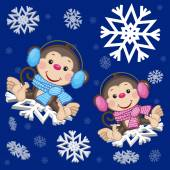 Two Monkeys at the snowflake