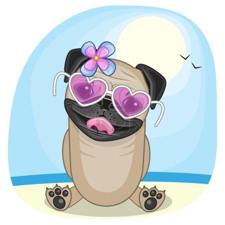 Pug Dog on the beach
