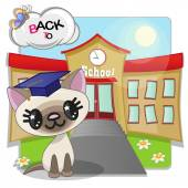 Cat and school