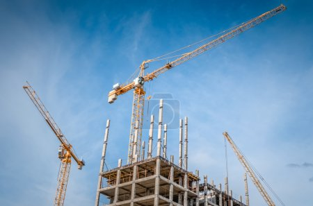 New highrise houses and hoisting tower cranes