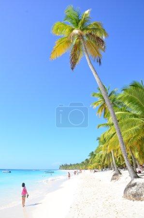 People on the sunny beach