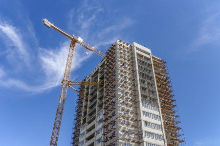Industrial landscape and hoisting tower cranes