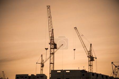 Housing development and highrise cranes