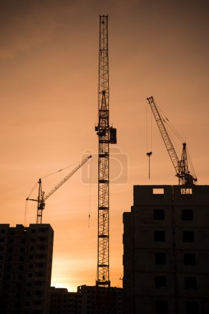 Building building and industrial cranes
