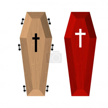 Set of coffins. Red beautiful expensive coffin and a wooden coff