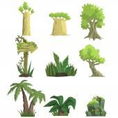 Tropical Forest Landscape Elements