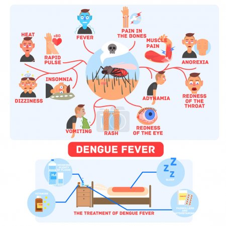 Illustration for Dengue Fever Infographics Fun Flat Vector Illustration In Simple Cartoon Design With Text - Royalty Free Image