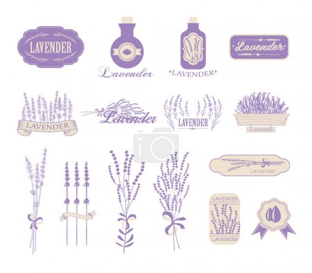 Illustration for Vintage lavender background, aromatherapy and spa packaging design - Royalty Free Image