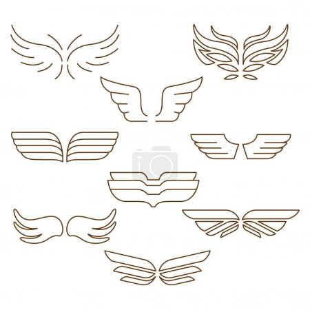 linear wings on white background