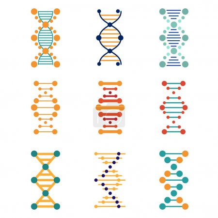 DNA, genetics vector icons