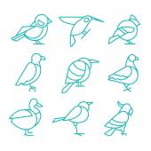 Set of birds in line style Vector Illustrations