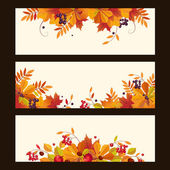 Autumn Banners with Leaves Chestnuts and Ripe Berries Vector Illustration