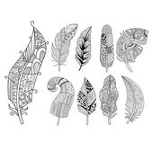 Ornamental Feathers in Handdrawn Style Vestor Illustration Set