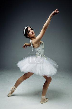 Photo pour Danseurs de ballet classique féminin posant - image libre de droit