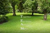 TEAM as TOGETHER EVERYONE ACHIEVES MORE written on green grass background with available copy space. Motivational Concept image