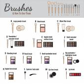 Brushes for makeup - vector illustration
