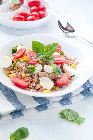 Cold salad of farro with mozzarella , tomato and tuna