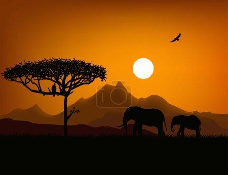 Illustration for Sunset savanna - Royalty Free Image