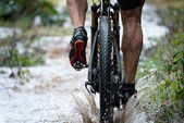 Mountain biker driving