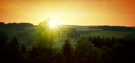 Photo for Mountains in against the setting sun. Colorful summer sunset  and trees. - Royalty Free Image