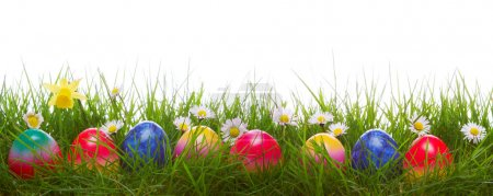Photo for Green grass and colorful easter eggs.Easter  background. - Royalty Free Image
