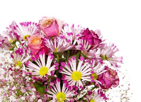 Photo pour Bouquet de floraison rose fleurs isolé sur fond blanc. - image libre de droit