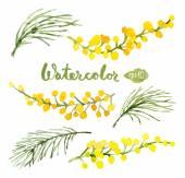 watercolor botanical elements set