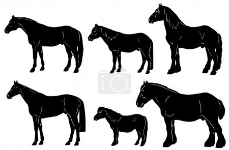 Horses silhouettes with features