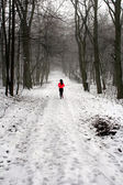Morning jog in the forest in winter