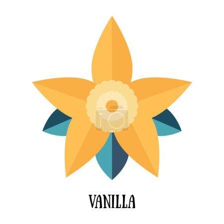 Illustration pour Vanille gousse et fleur isolées sur fond blanc illustration vectorielle - image libre de droit