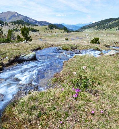 Spring stream of Perafita river in top of valley