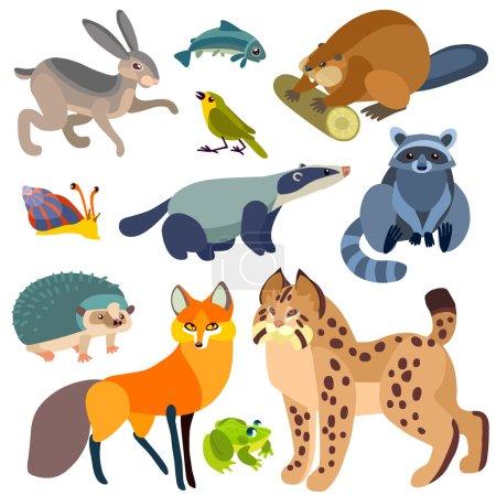 Illustration pour Illustration d'animaux forestiers isolés sur fond blanc . - image libre de droit