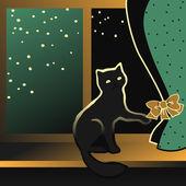 Black kitten sitting on a window sill