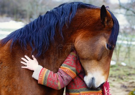 Portrait woman and horse in outdoor. Woman hugging a horse .