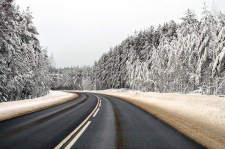 Photo pour Chemin d'hiver et chapeaux de neige sur les arbres, Russie - image libre de droit