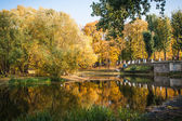 Beautiful autumn park in Moscow