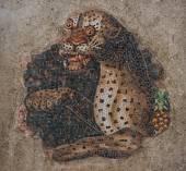 Ancient mosaics at the island of Delos
