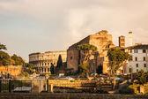 ruines of Colloseum, Rome