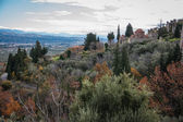 Ruins of Byzantine castle town of Mystras