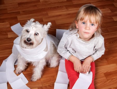 Naughty child and white schnauzer puppy sitting on a floor , playing with roll of toilet paper