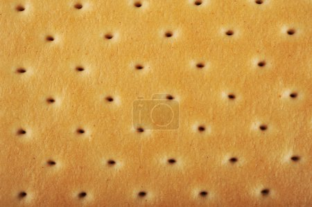 Photo for Biscuit cookie texture - Royalty Free Image