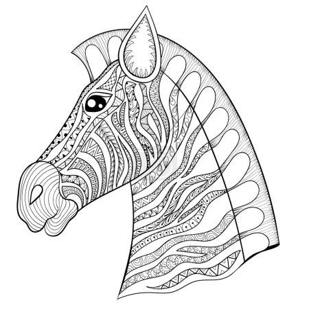 Vector zentangle Zebra Head illustration, Horse print for adult