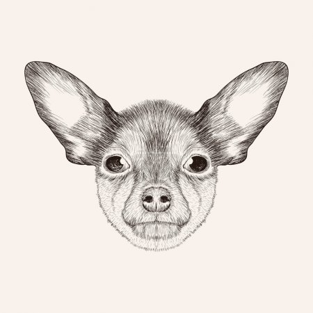 SketchToy Terrier. Hand drawn face of dog illustration.