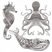 Chobotnice, velryby a mořský koník