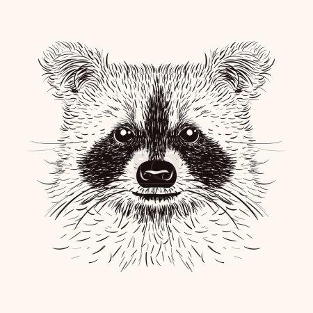 Illustration pour Sketch liner raton laveur. Illustration vectorielle dessinée à la main dans un style doodle. Conception de gravure pour tatouages ou impression . - image libre de droit