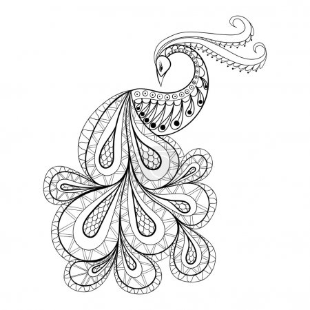 Hand drawn peacock  for antistress Coloring Page with high detai
