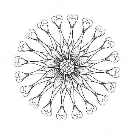 Coloring page with Osteospermum flowers, Flower Power Spider Pur